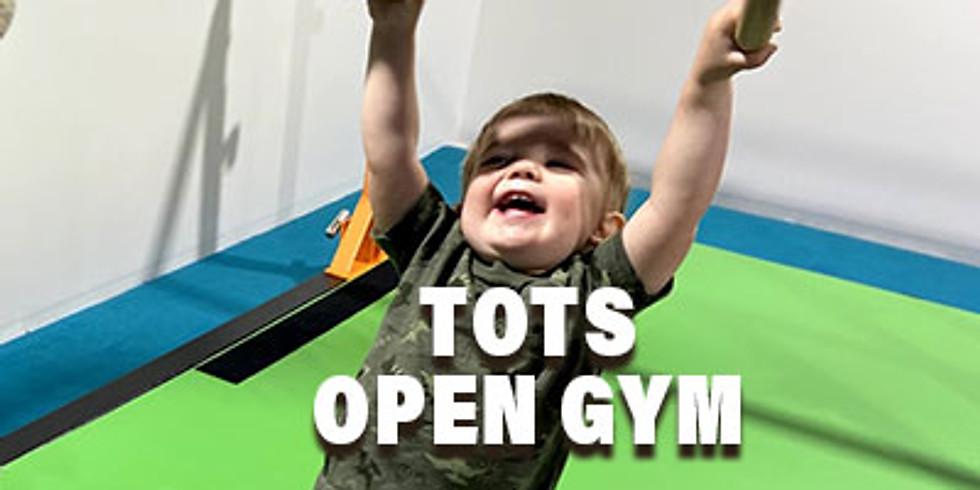 Tots Open Gym! 10:00 AM