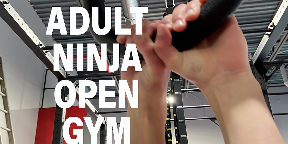Adult Ninja Open Gym 8-9:30 PM - $15