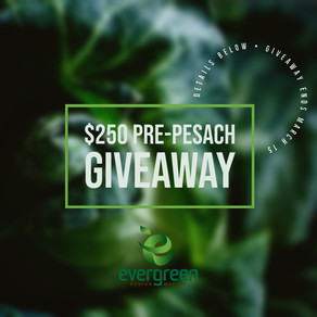 $250 Pre-Pesach Giveaway