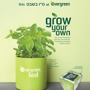Tu B'Shvat at Evergreen