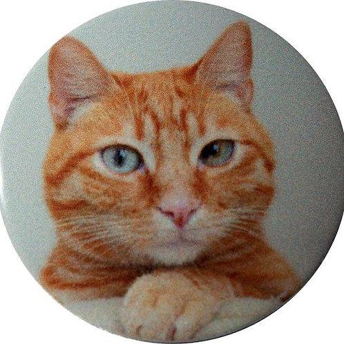 スタートボタン カバー ・ 猫 Cat トヨタ ダイハツ スバル 車用
