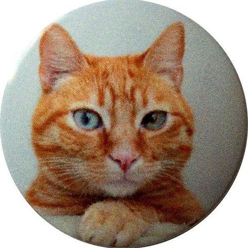 スタートボタン カバー ・ 猫 Cat ・ えっ 貼るだけ!? かんたん取付 プッシュ スタートボタン アクセサリ カバー ホンダ車用
