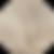 12.16-louro-platino-acinzentado-kit-tona