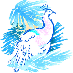 Tropical%20Bird_edited.png