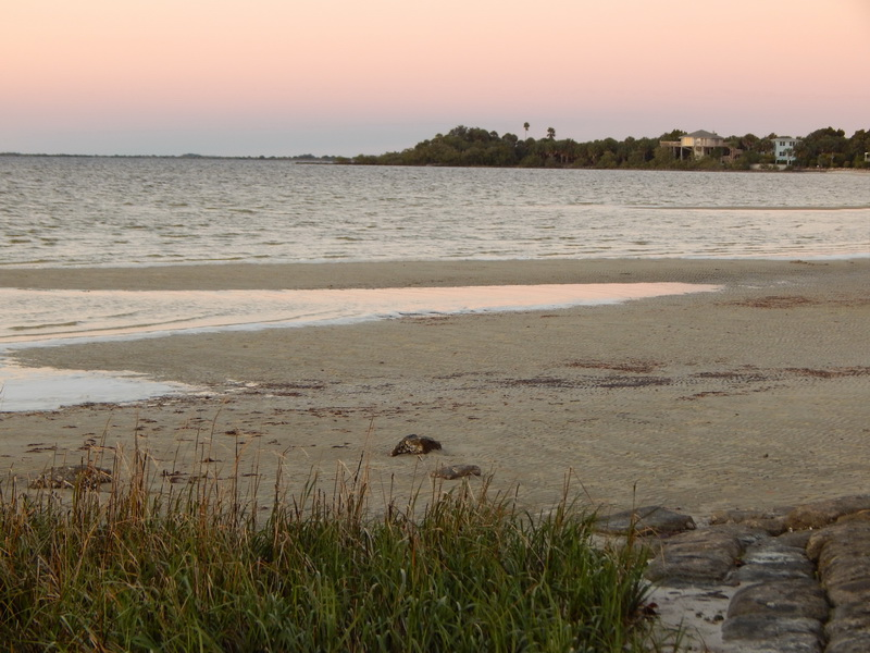 Pine island afterglow beach