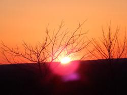 BlinnHill Winter Sun Corona .25 DSCN0283.JPG
