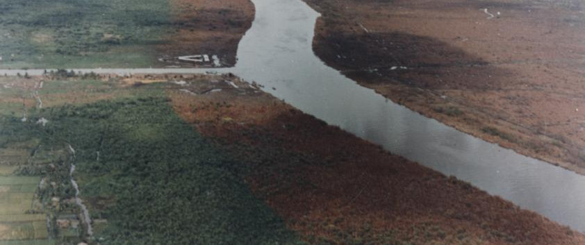 Defoliation along a river
