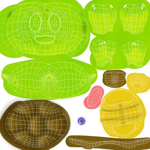 Turtle's Texture