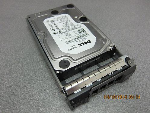 CSS20025 - Dell 1TB SATA Enterprise Drive