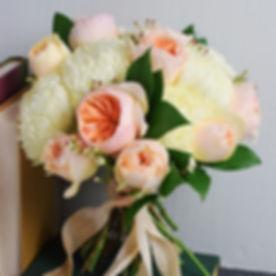 Peach Garden Rose.jpg