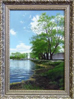 Берег озера Бельского. Бронницы