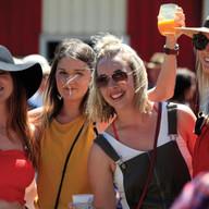 NZCF2018 Official Festival Photos4.jpg