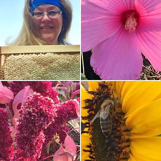 Flowers, Nectar and Honey