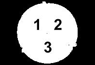 ciclo 2.png
