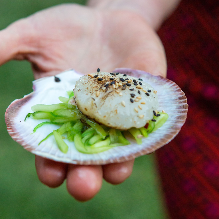 Flavours of Shark Bay