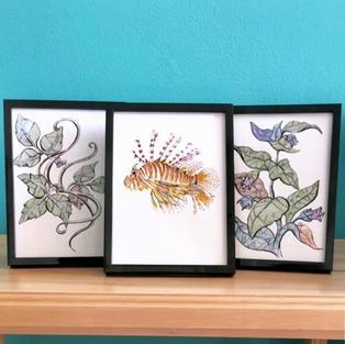 Lion Fish Triptych