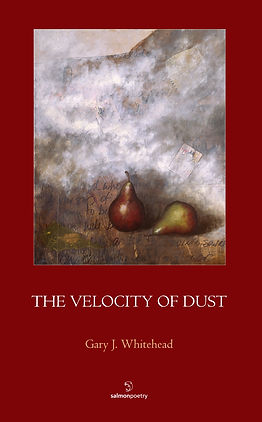 The Velocity of Dust poetry book by Gary J. Whitehead