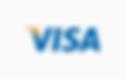 Low Vision payments Visa card