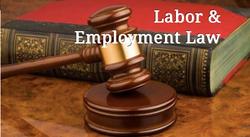 Michigan Labor Lawyers