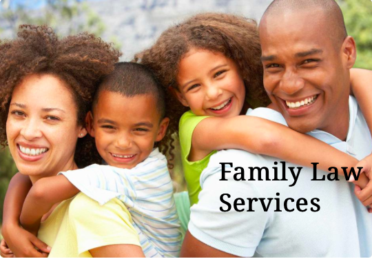 Michigan Family Lawyers