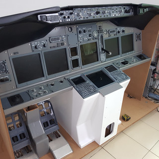 737 MIP SECTION