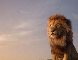 1_THE-LION-KING_edited_edited_edited