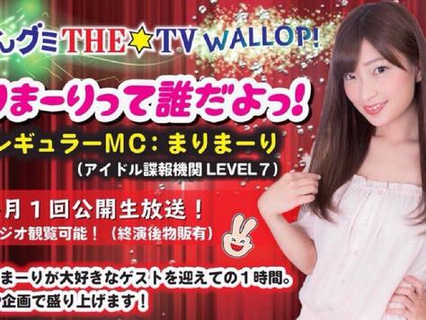 まけんグミTHE☆TV WALLOP『まりまーりって誰だよっ!』