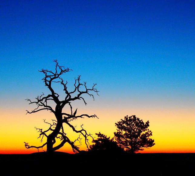 Dawn on Horse Creek Ranch