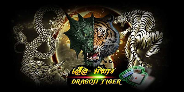 dragontiger-1.jpg