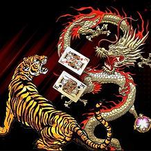 DraGon-Tiger90-2_edited.jpg