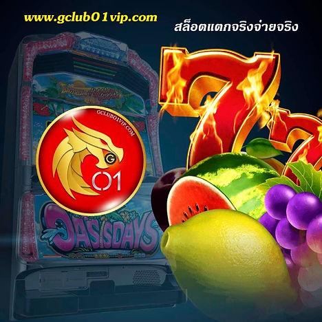 fruit slot_edited.jpg