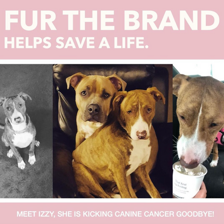 Fur The Brand Helps Izzy!