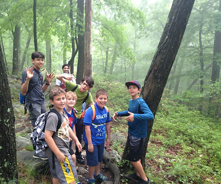 boys hiking in woods on foggy day
