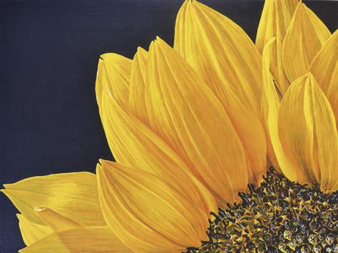 closeup yellow