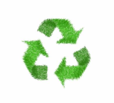 logo_dd_0.png