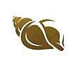 Seashell 1_InPixio.png