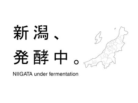 「発酵ポイント」関連情報リンク集