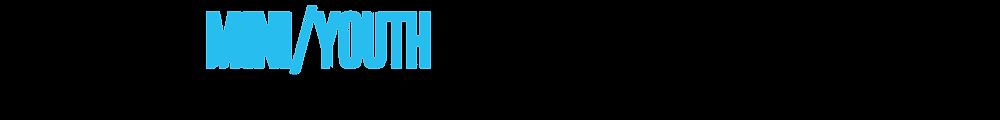 MINI-13.png