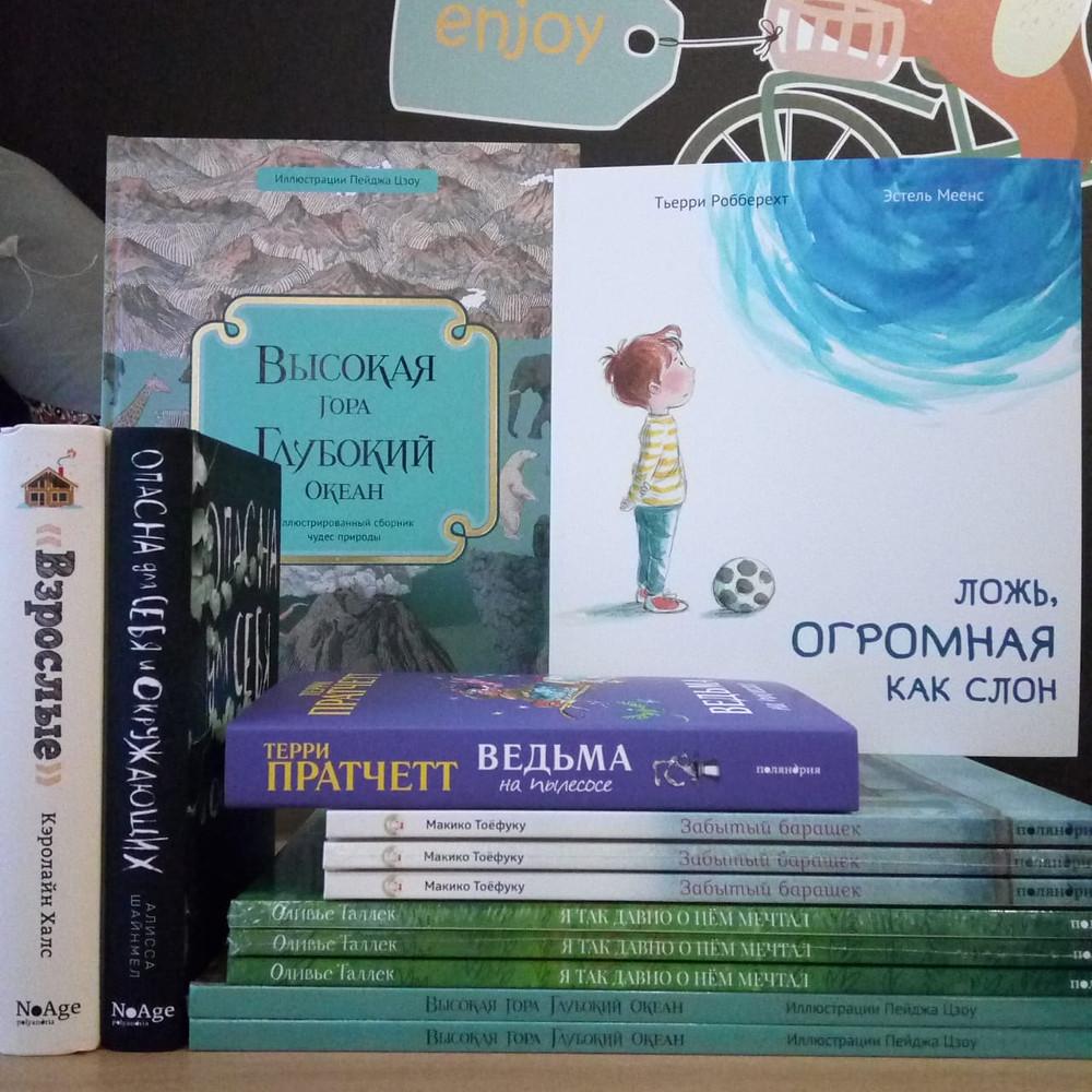 Новые поступления детских книг издательство Поляндрия Маленькая Мечта Красноярск