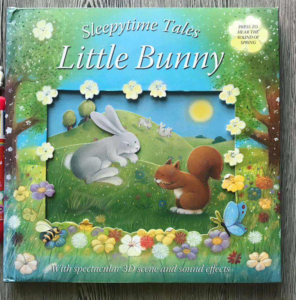 Книги на английском   Маленькая Мечта