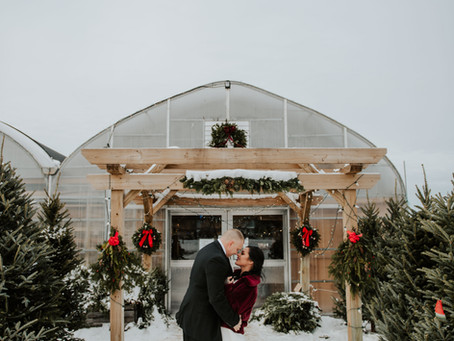 A Romantic, Christmassy, Greenhouse Elopement