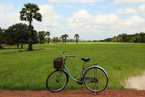 Donate a push bike