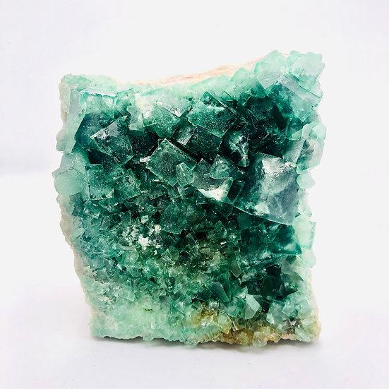 Fluorite cubique verte   forme naturelle