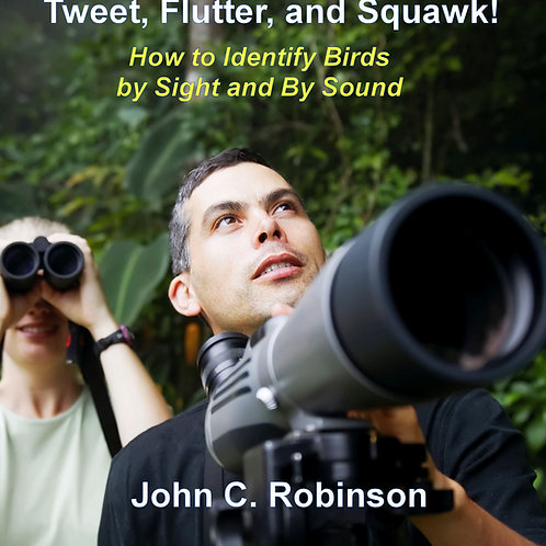 Tweet, Flutter, and Squawk! How to Identify Birds by Sight and by Sound