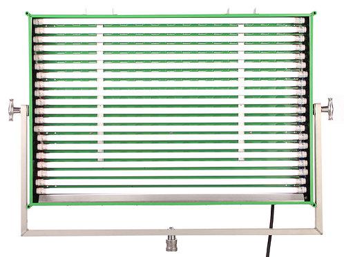 16-Lite LED