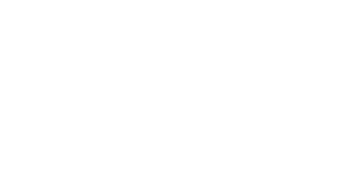 the dig logo_edited.png