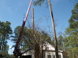 smith tree service llc woodruff