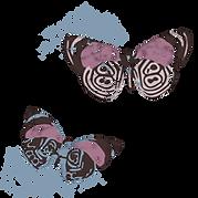 butterflies_blu3.png