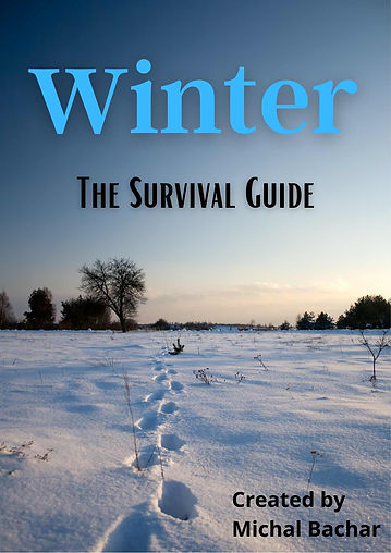 WINTER & CHRISTMAS survival guide  (1).j