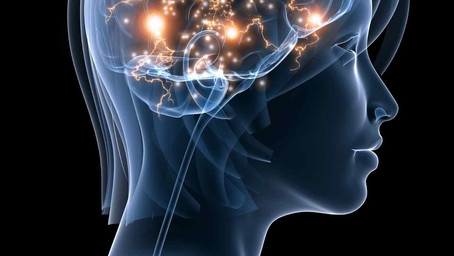 OMEGA 3s in Human Brain: What are they? Why are they important? How much do you need?